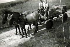 Brugsens-varetur-paa-vognen-....