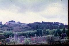 Pederstup-kirkegaard-1