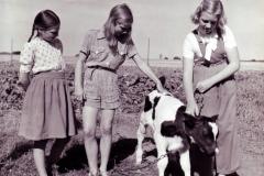 VSF-28-juli-1949