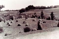 Bystaevnet-1976
