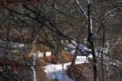 Vrå set fra gravhøj  og omkring Tingdalsgaard i Vammen den 4. og 5.  marts 2010